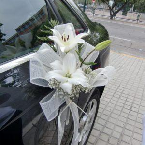 coche-05